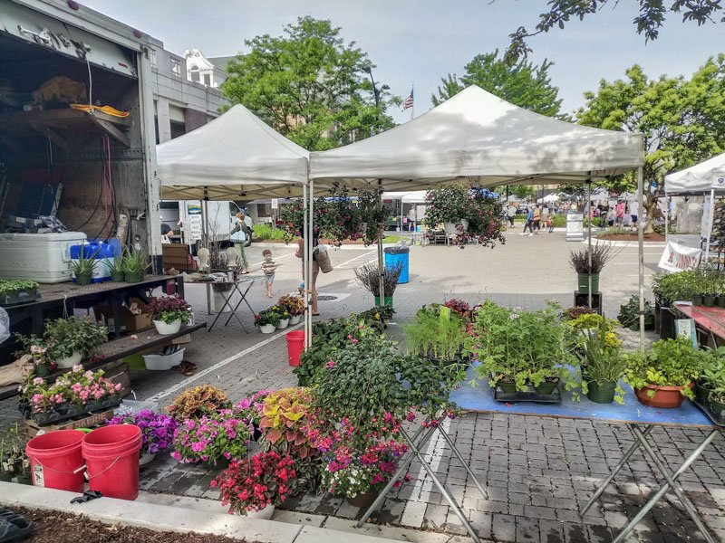 https://lgdelivers.com/wp-content/uploads/2020/06/La_Grange_Farmers_Market-1.jpg