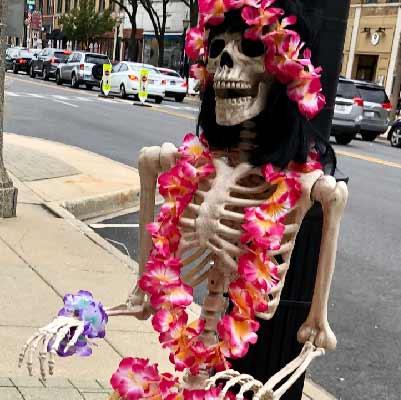 https://lgdelivers.com/wp-content/uploads/2020/10/Skeleton1_400.jpg